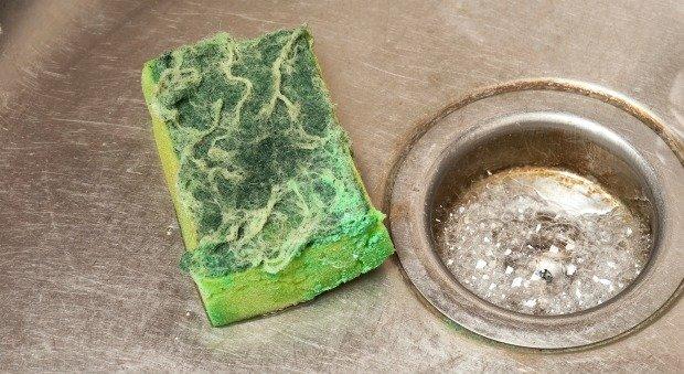 La esponja de la cocina es uno de los objetos con mayor concentración de germenes y bacterias