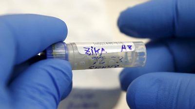 El virus del zika se descubrió en la década de 1940