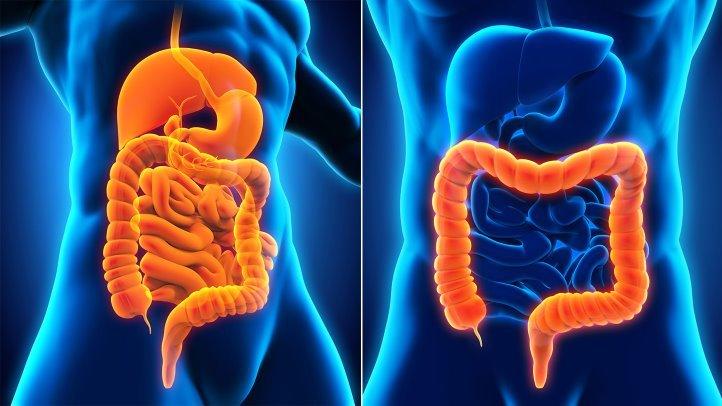 La colitis, sus síntomas y causas