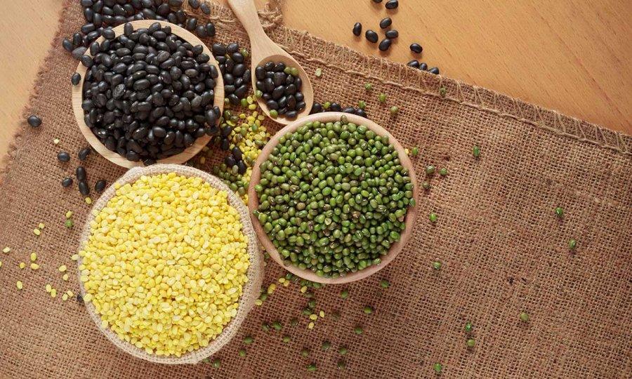Fitosteroles y lecitinas vegetales